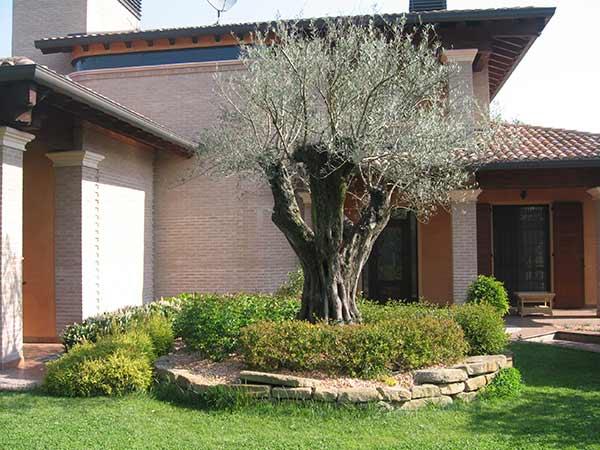 Preventivi-realizzazione-giardini-Quattro-Castella