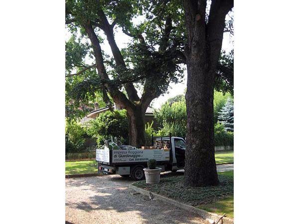 Giardiniere-per-manutenzione-giardino-reggio-emilia