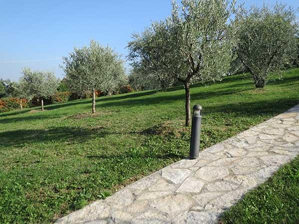 Sistemi-di-irrigazione-per-frutteti-Reggio-Emilia-Parma